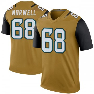 Youth Nike Jacksonville Jaguars Andrew Norwell Gold Color Rush Bold Jersey - Legend