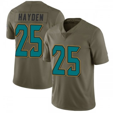 Youth Nike Jacksonville Jaguars D.J. Hayden Green 2017 Salute to Service Jersey - Limited